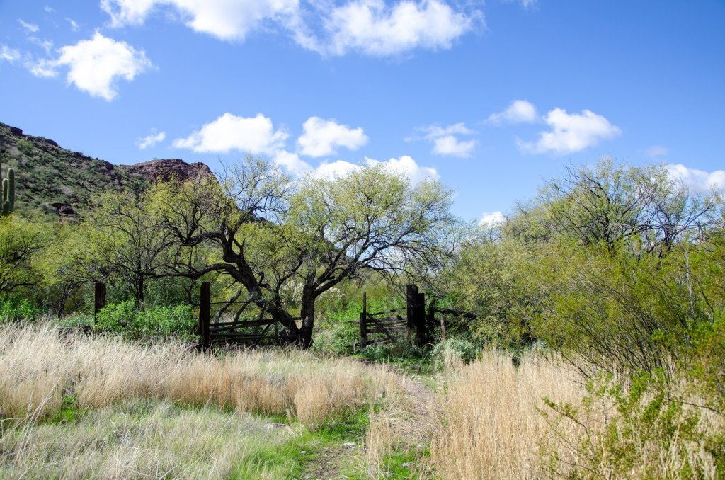 An old corral and ranch are shown