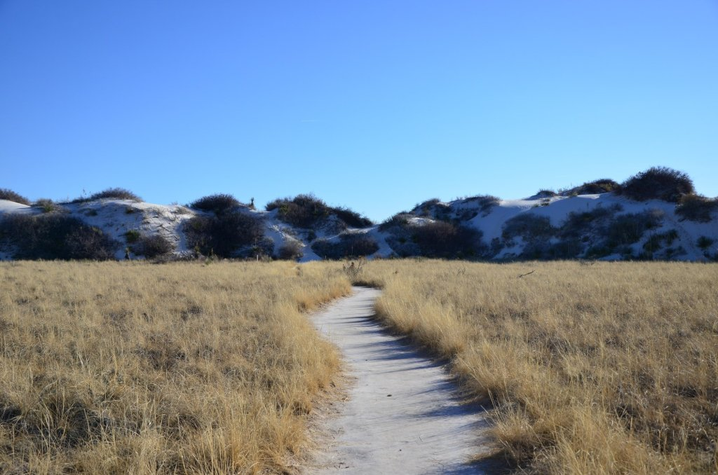 Dune Nature Trail is shown