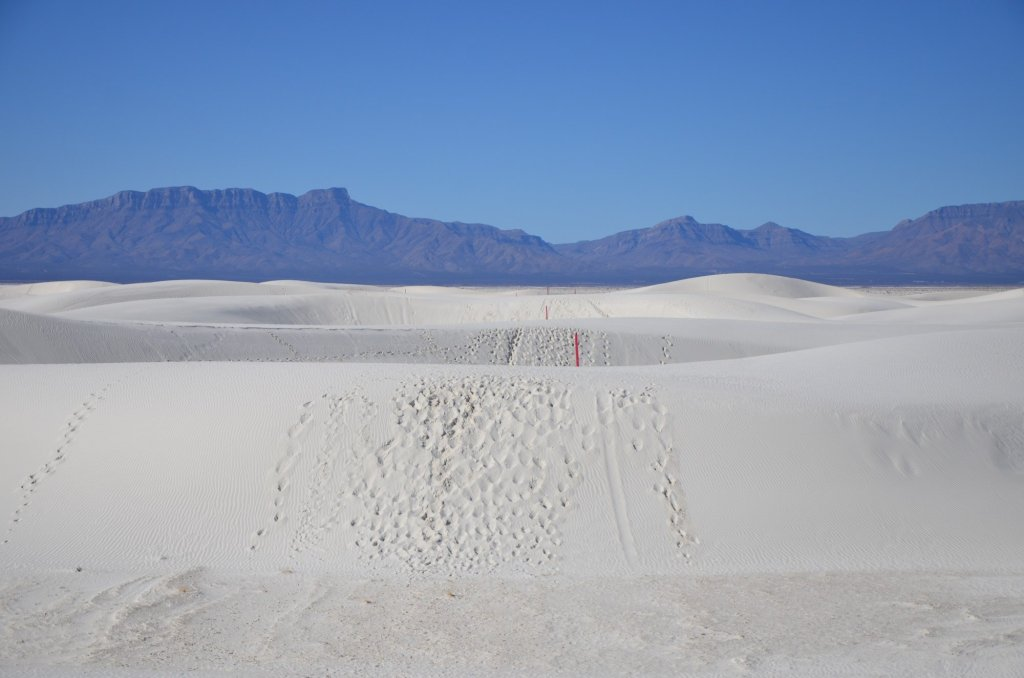 Trail markers are seen among the dunes