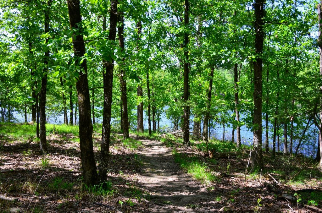 The lake is shown on the Island Trail at DeGray Lake State Park