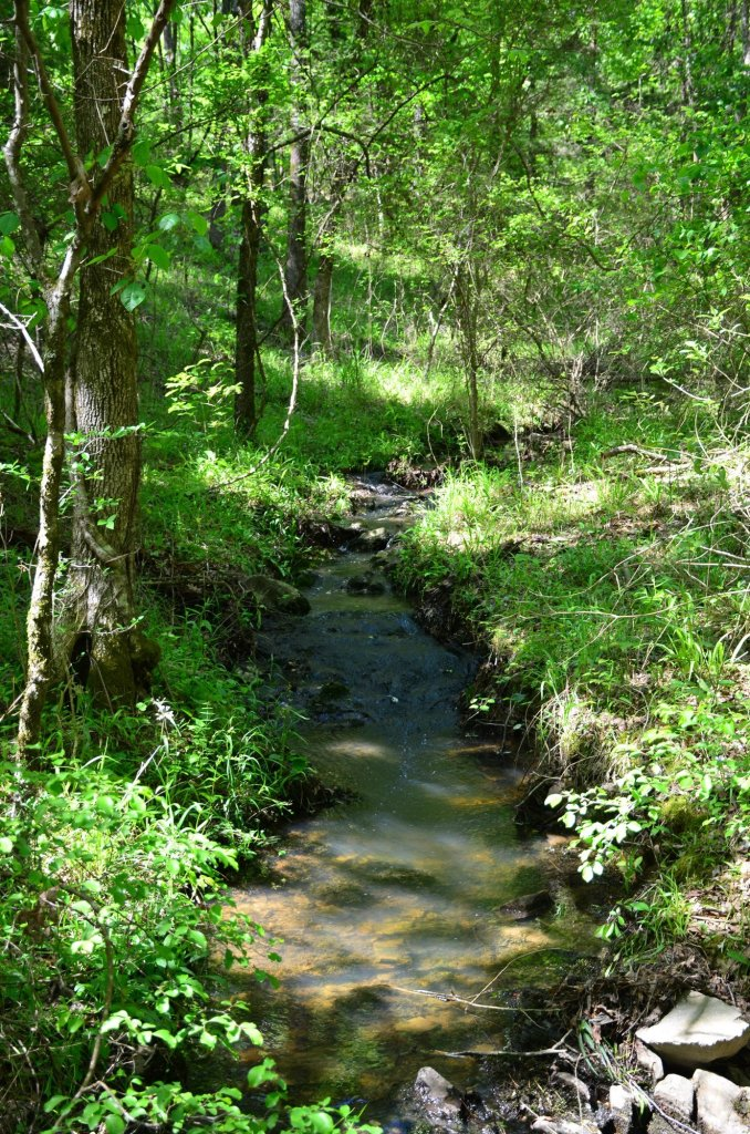A stream is shown