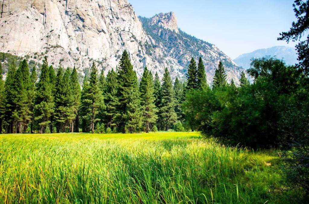 Zumwalt Meadow is shown