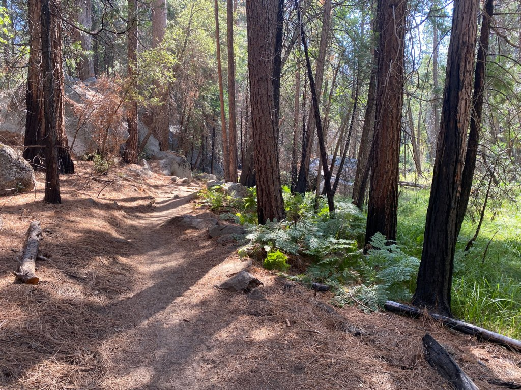 Kings Canyon trail is shown
