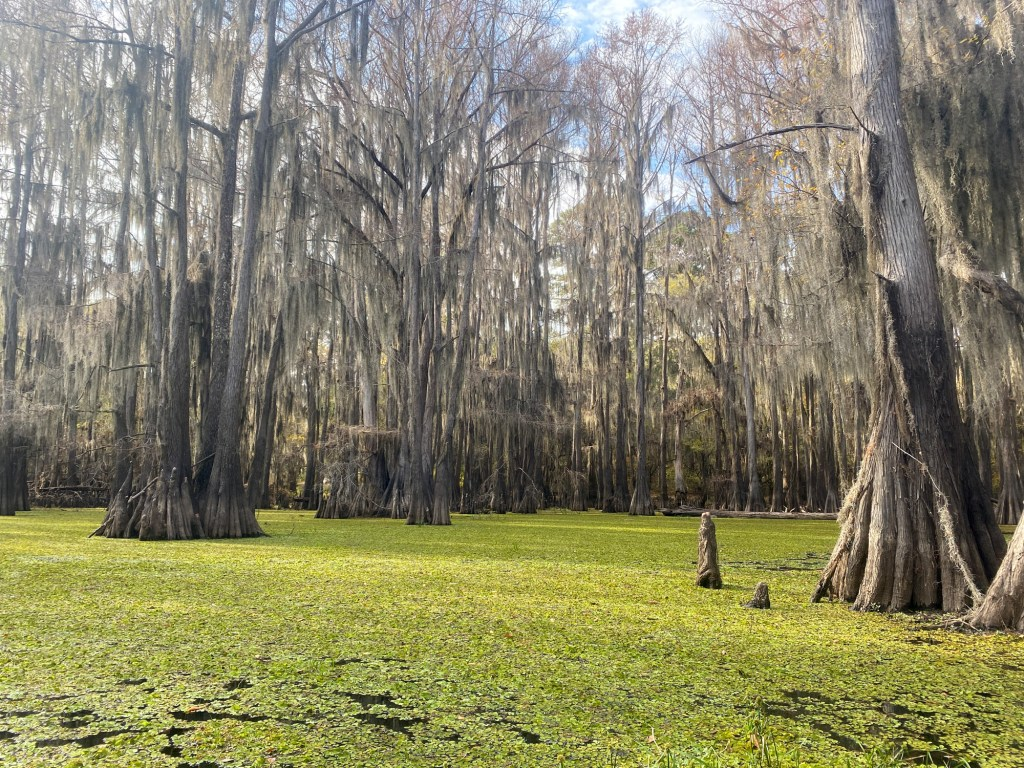 Caddo Lake is shown on the Hell's Half Acre Paddling Trail