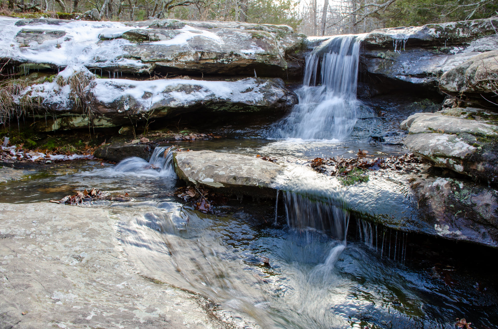 Hideout Hollow Trail