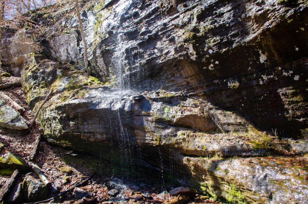 Alum Cove Trail