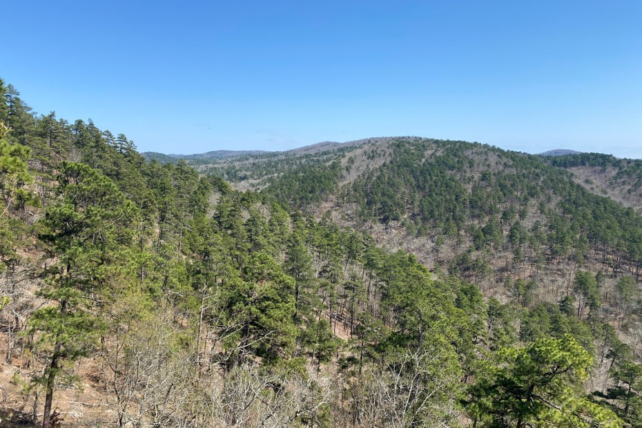 The view from the Goat Rock Trail is shown