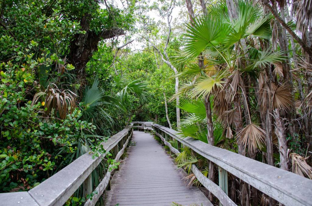 Everglades National Park Hiking Trails