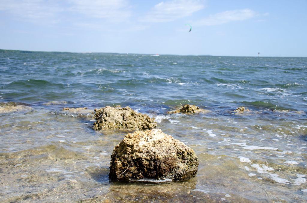 Ocean rocks are shown at Biscayne National Park