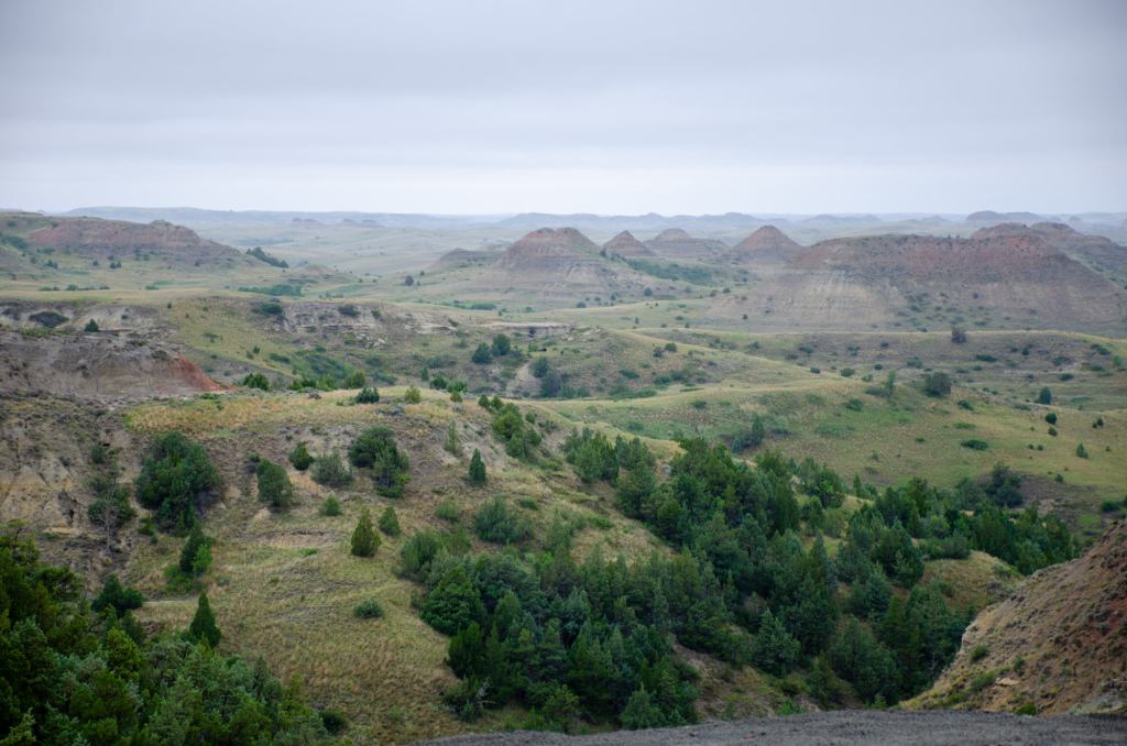 The prairie is shown at Theodore Roosevelt National Park