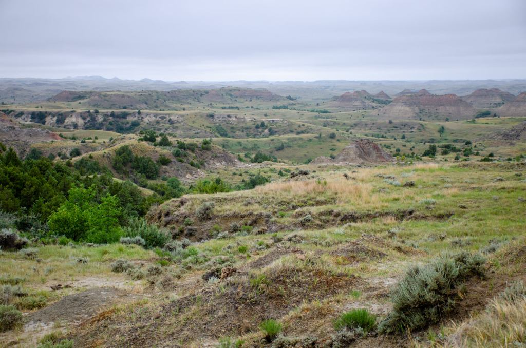 Theodore Roosevelt National Park is shown