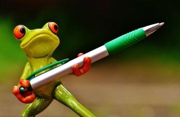 Pen & Frog