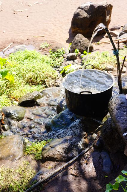 Fresh spring water constantly flows on the beach of Eiao