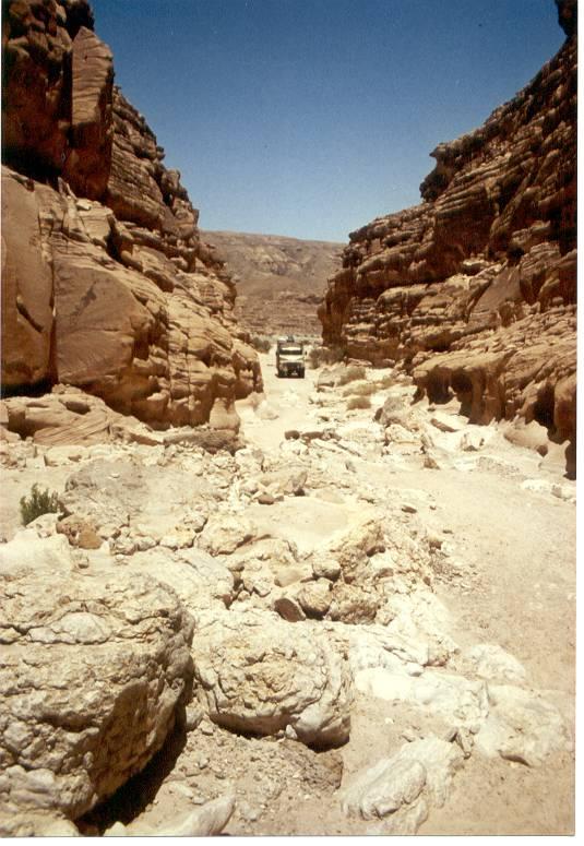Hanomag auf Sinai