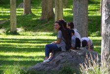 ...liegt im zentralen schattigen Park...