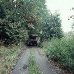 Schmale Wege in Masuren