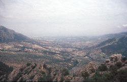 ...einen weiten Blick über die Olivenfelder bescherte