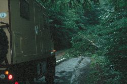 """""""natürliche"""" Straßensperre"""" im Maramures nach dem heftigen Gewitter"""