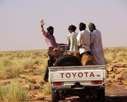 Transportfahrzeug der Nomaden - Pickups