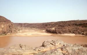 Der Lebensraum der Krokodile - ein Guelta