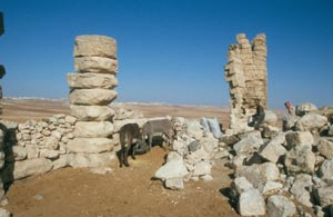 Dhat Ras - Reste von zwei Tempelanlagen
