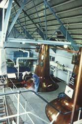 Distillery Museum Dallas Dhu