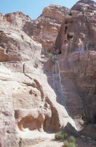 "Das Löwenrelief am ""Wasserfall"" auf dem Weg ins Wadi Farasa"