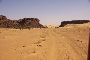 Das Tor zur Dünenauffahrt