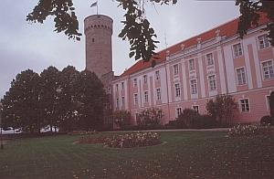 Der lange Hermann (Pikk Hermann)