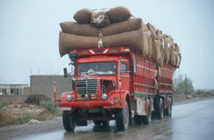 Gut 15 dieser Büssing-Lkw mit 3-Achs-Anhänger aus den 50er mit Baumwolle kamen uns entgegen
