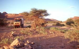 zum Pass Amogjar gibt es schöne Queds