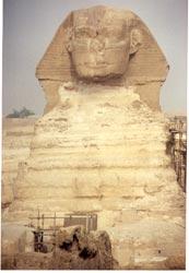 Der Sphinx