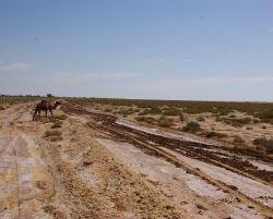 2530_Piste_beim_Dghoumes_Nationalpark