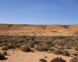 Marokko_2012_0355