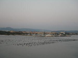 Hafeneinfahrt von Olbia