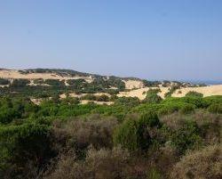 Sardinien_2011_0670