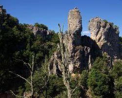 Sardinien_2011_0975