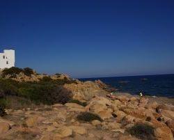 Sardinien_2011_1100
