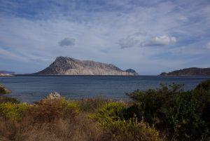 Blick auf die Insel Tavolara von unseren letzten Stellplatz aus.