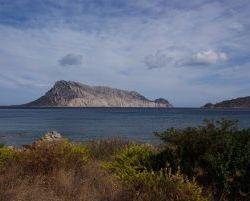 Sardinien_2011_1110