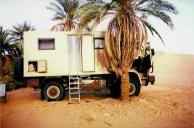 Herrlicher Stellplatz unter Palmen
