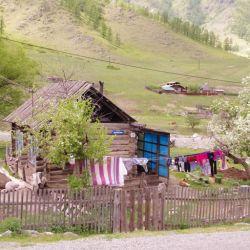 0022325_Altai_Kate