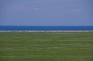 Der strenggeschützte See UVS-Nuur aus der Ferne