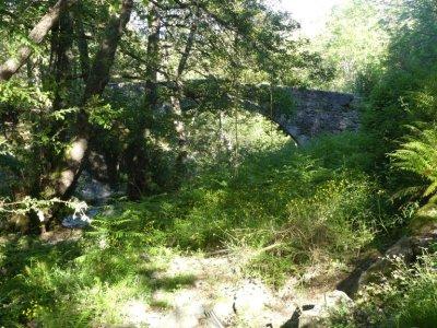 Nicht weit von Murato befindet sich eine alte, schmale, genuesische Brücke...
