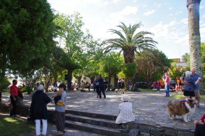 Tango-Tanztee auf der Plaza Mayor