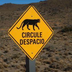 0037447_Parque_Patagonica_Pumaschild