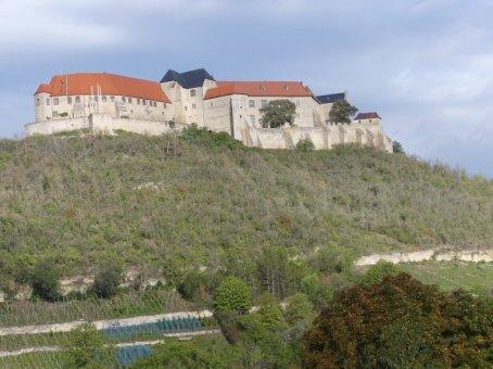 im Weinbaugebiet Freyburg.