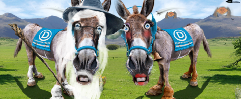 BerndalfandHillarydonkeys