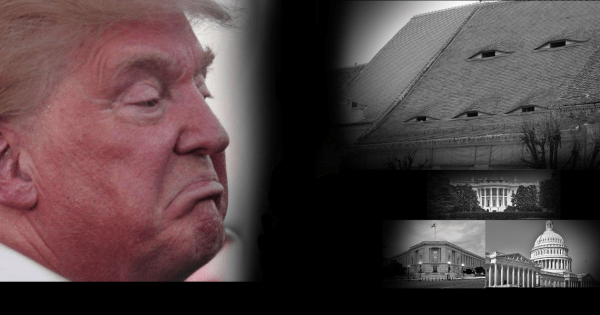 Blog#42's 'Things Trump Did While You Weren't Looking