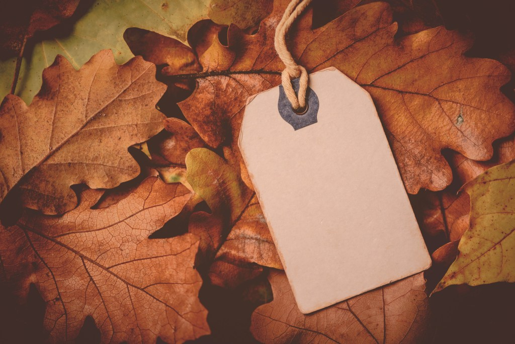 128102875-price-tag-from-with-twine-on-dry-autumn-leaves-background-1024x684 6 Trik Supaya Online Shopmu Eksis di Instagram